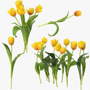 3d model tulips yellow