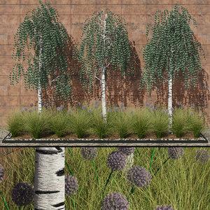 modern flowerbed birches flowers 3d max