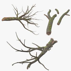fallen logs oak max