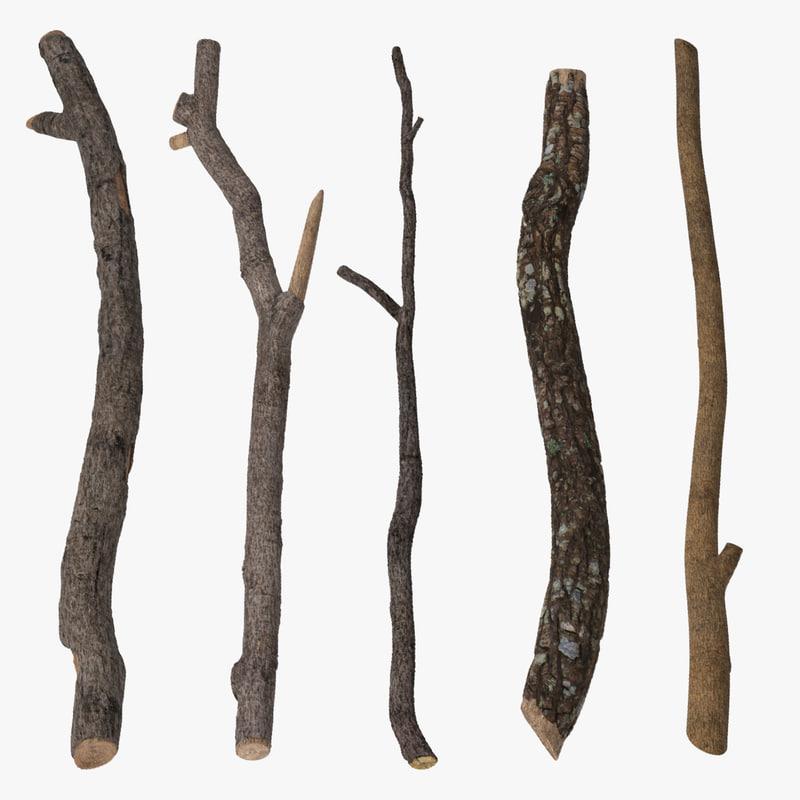 3d c4d 5 twigs
