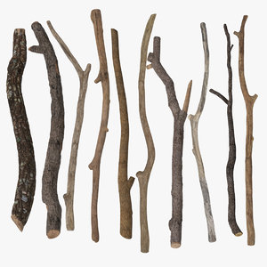 twigs sticks 3d max