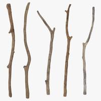 3d 5 sticks model