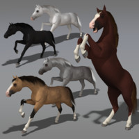 max modeled animations horses