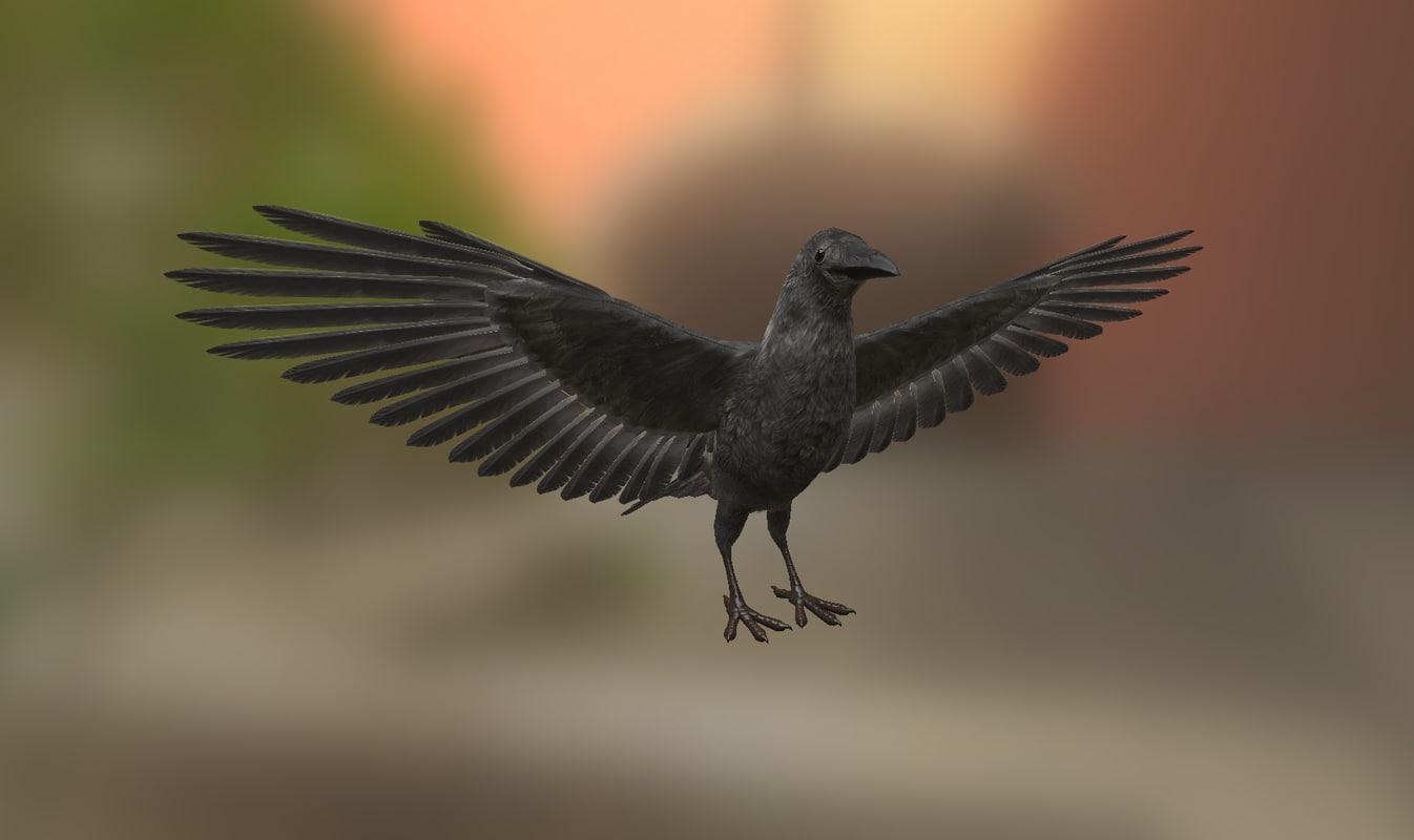 3ds midpoly raven crow blackbird