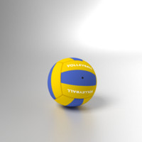 volleyball ball 3ds