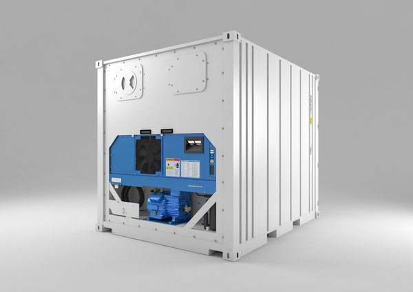 max shipping container reefer 10