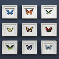 3d model decorative butterflies set design