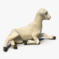 3d lamb pose 4