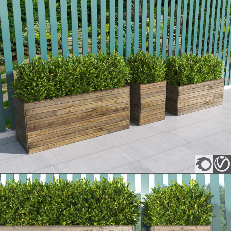hedges wooden planters 3d model