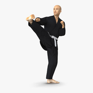 max japanese karate fighter black