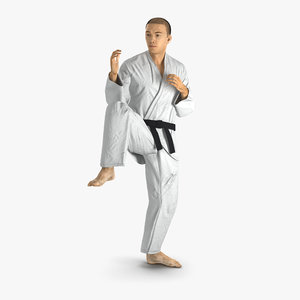 japanese karate fighter pose 3d max