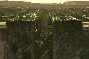 x plants walls bushes