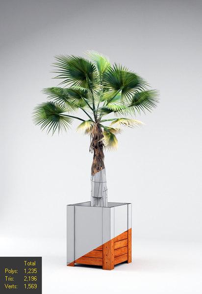 indoor outdoor plant 3d model