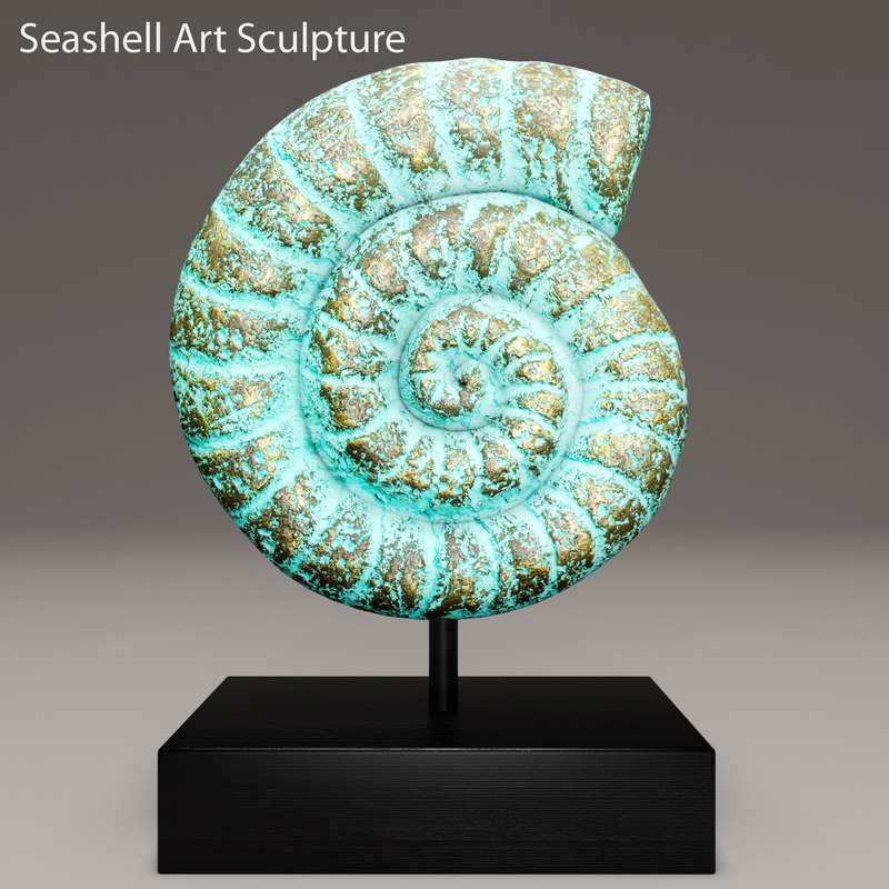 Nautilus Shell 3 00.jpg
