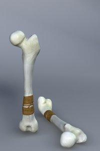 3d model bone club