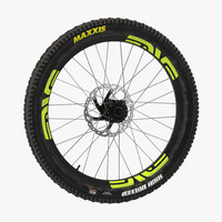 bicycle wheel max