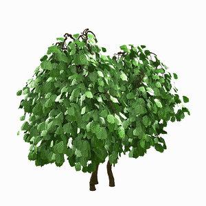 3d tree environment