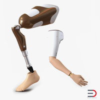 3d model prosthetic leg arm rigged