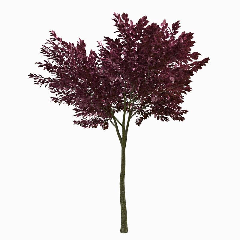 3d fbx tree environment