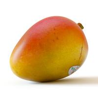 3d mango model