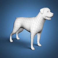 3d rottweiler base mesh dog