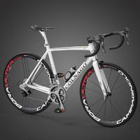 Colnago V1-R Roadbike