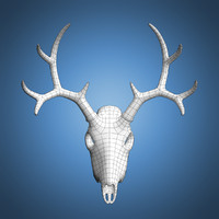 deer skull base mesh 3d model