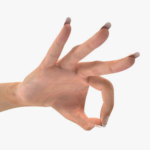 3d model female hand 2 ok