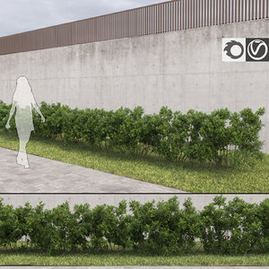 3d model cluster bushes