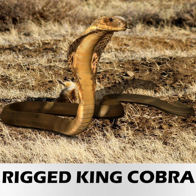 3d model realistic king cobra -