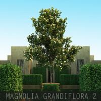3d model 2 5 tree