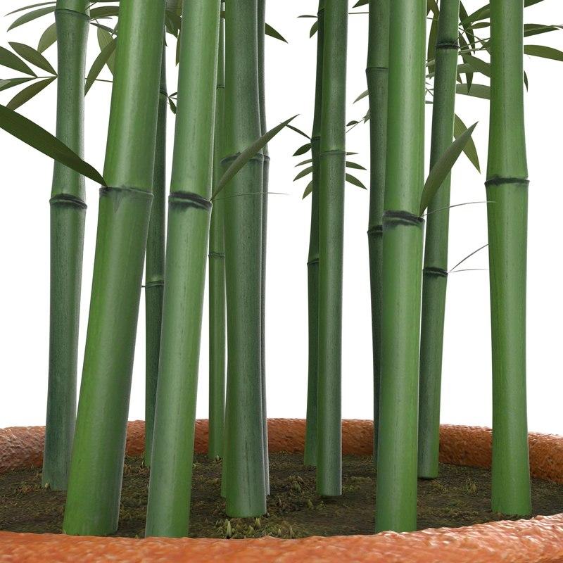 bamboo pot 3d max