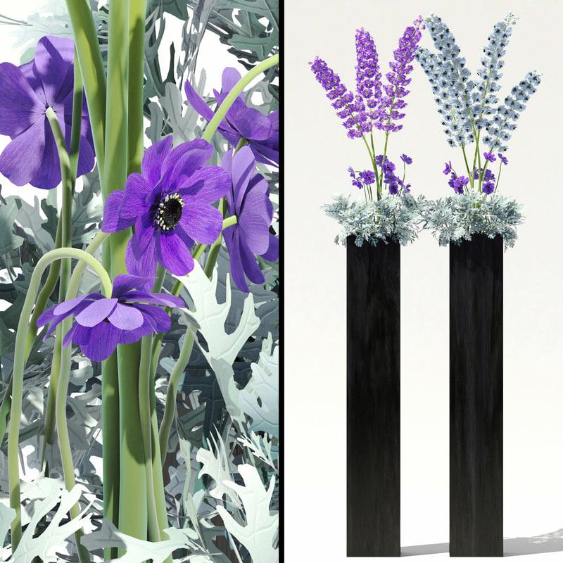 garden flowers flowerbeds delphiniums max