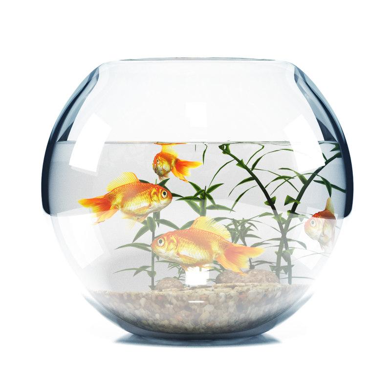 3d model of aquarium bowl