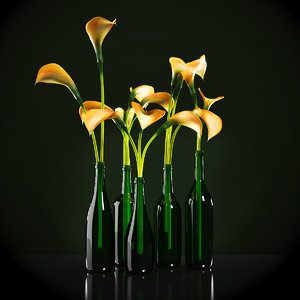 3d model orange calla lilies