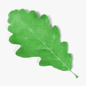 3d obj oak leaf