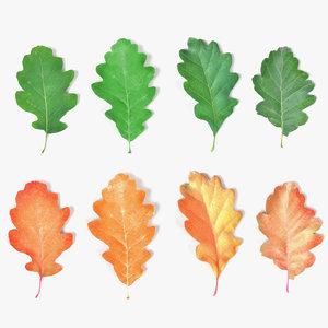 oak leaves 3d 3ds