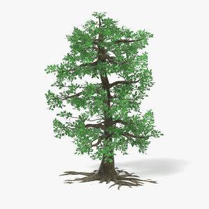 3d model big oak tree