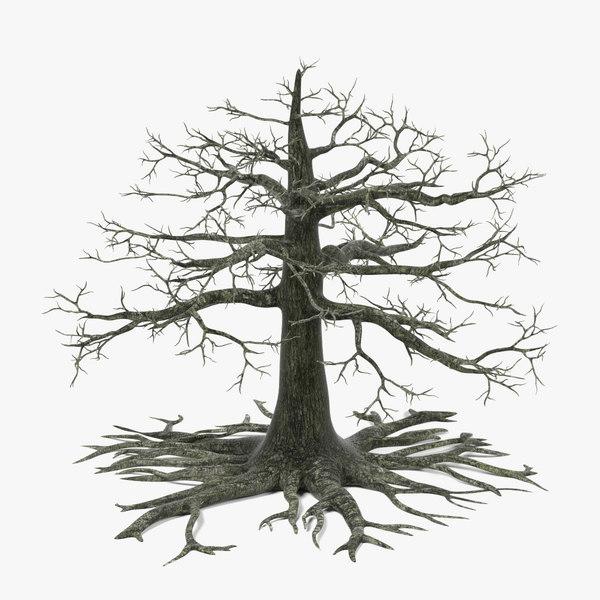 dead old oak tree 3d model