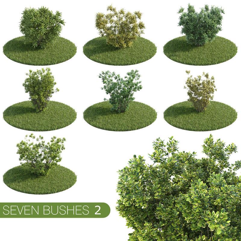 Bush 3D Models for Download TurboSquid
