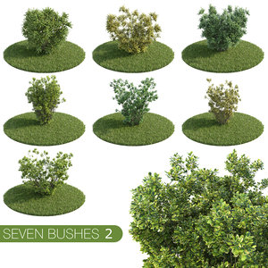 3d model bushes 2