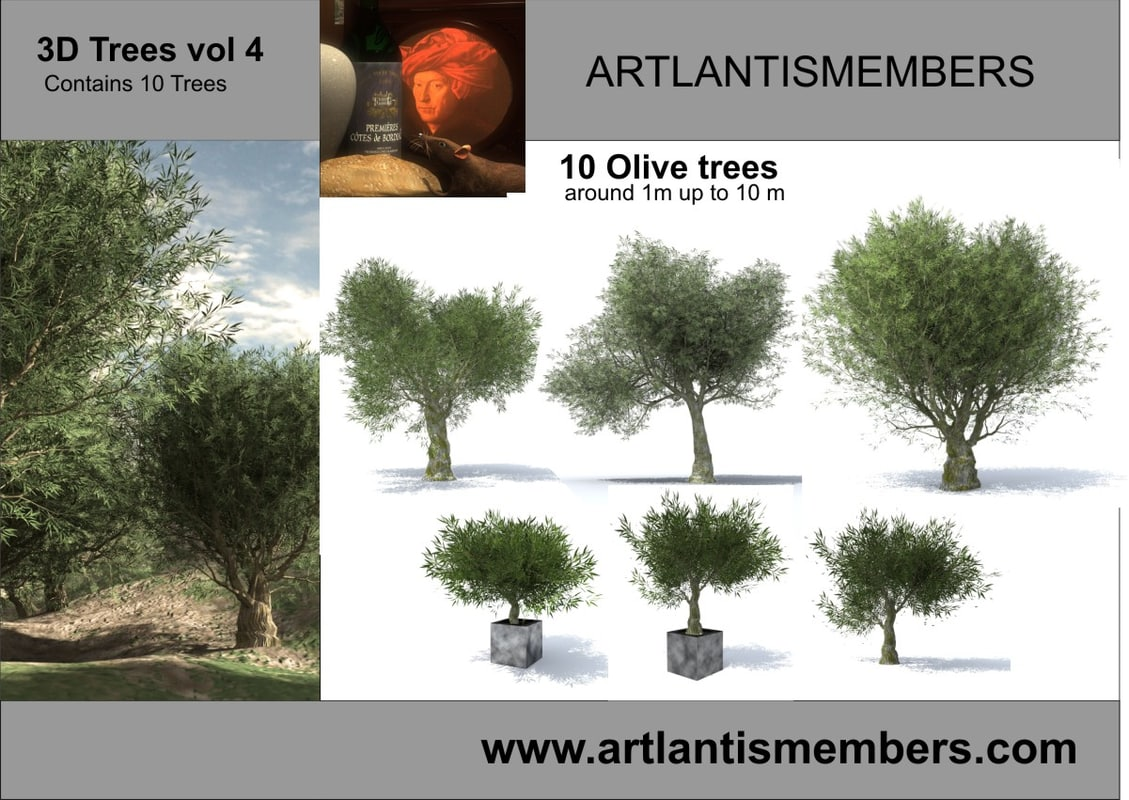 3d olive trees