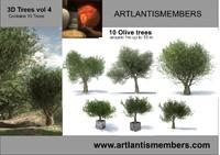 olive tree vol4
