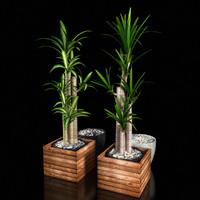 3d model plant 1