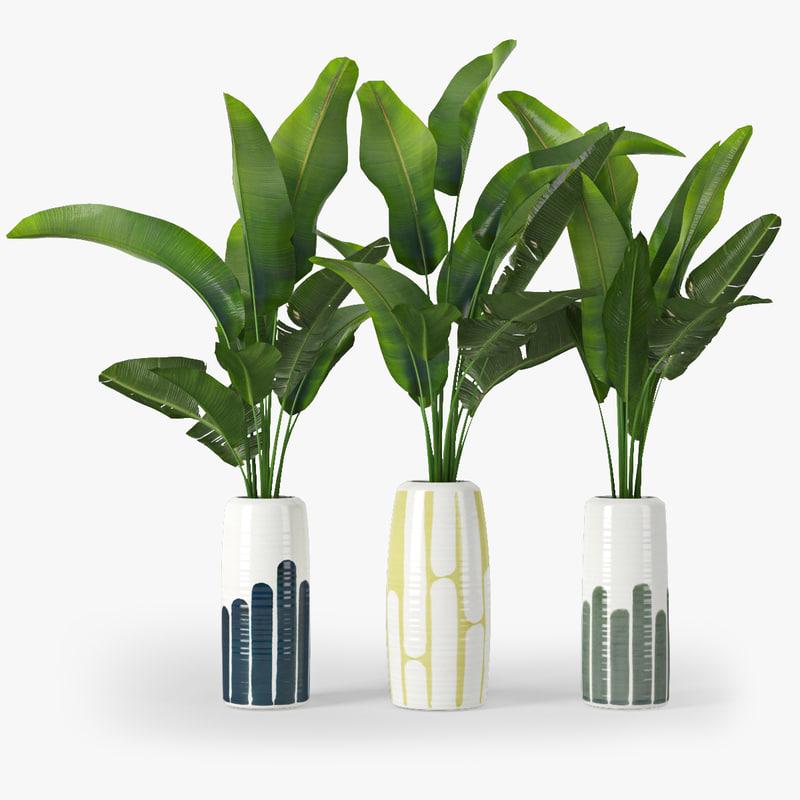 3d max vase tropical