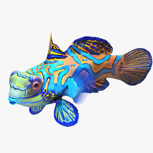 mandarinfish pose 2 3d max