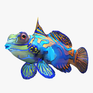 mandarinfish colors 3d max