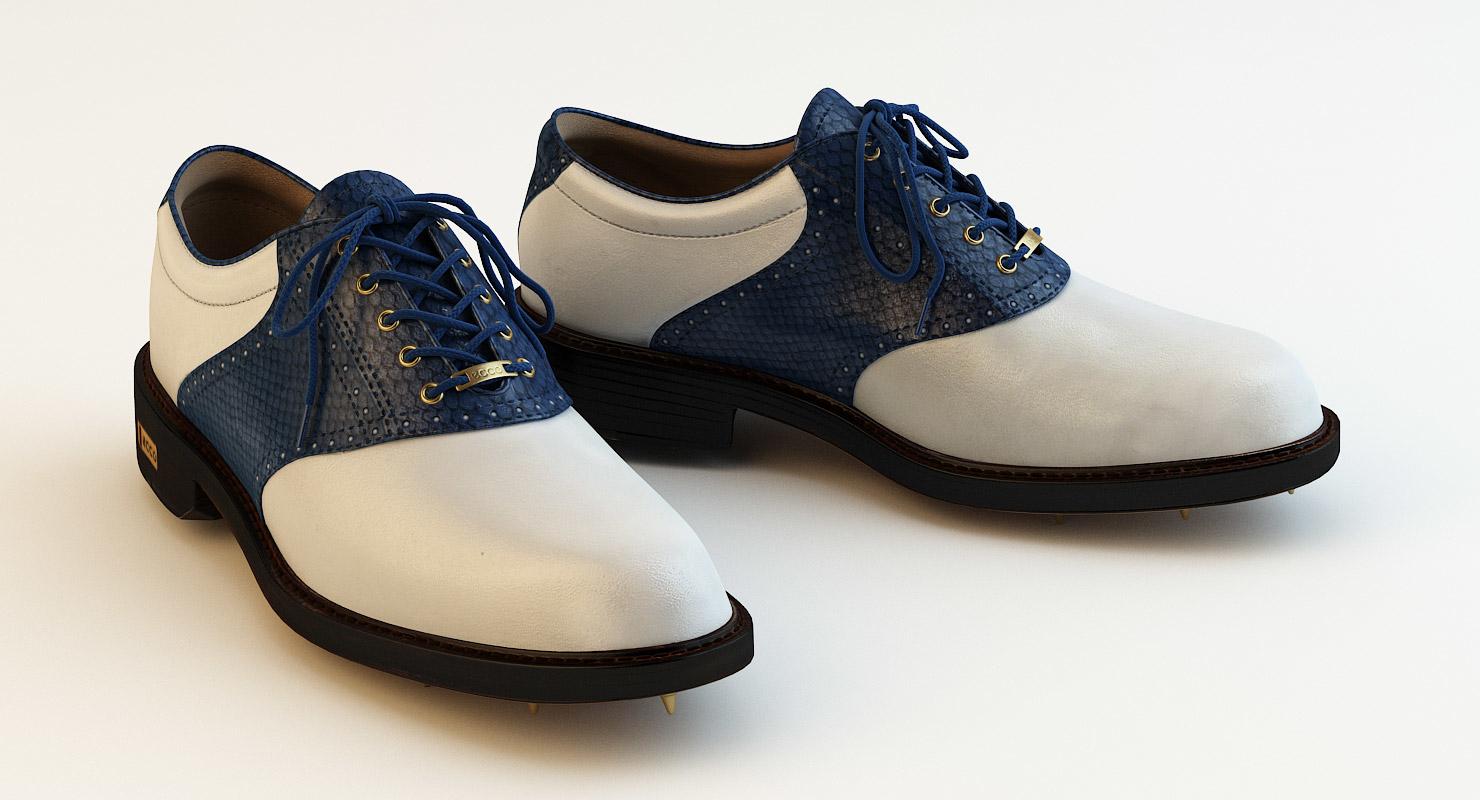 ecco gtx shoes
