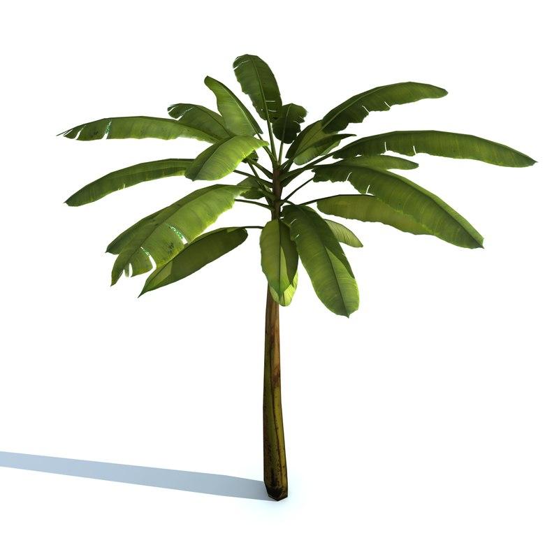 3d 3ds banana tree