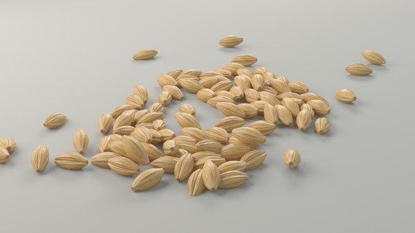 3d grain model